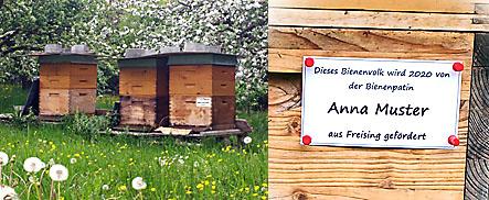 Bienenvolkpatenschaft