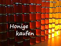 Shop-Abteilung Honige kaufen